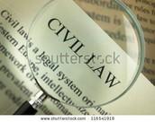 What is Civil Law Case