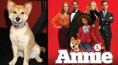 The Annie Dog