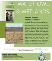 Waterfowl & Wetlands