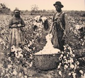 Getting to Know Slavery