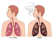 Healthy to Unhealthy Smoker