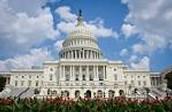 PVMS Goes to Washington!