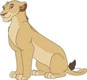 Lioness (Leona) proud ruler