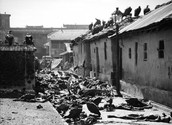 Aftermath of the Great Calcutta Killings