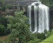 Enjoy the serenity of Nature, @tincha fall