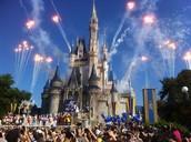 Tour Disney!!