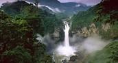 Valdivian Temperate Rainforest