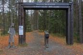 4. 一年四季都不该错过的奥兰卡(Oulanka)国家公园