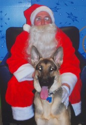 Holiday Photos with Santa