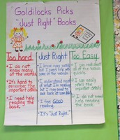 1st Grade Rocking the Anchor Charts!