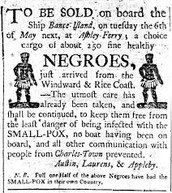 News About Newly-Imported Negroes
