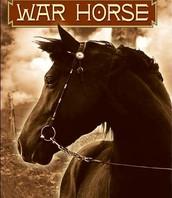 Book- War Horse