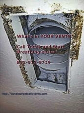 Call Today for our Holiday Specials! 832-512-5719