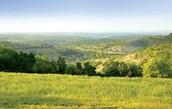 Best Land Ever