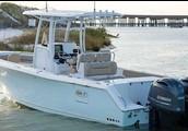 Sea hunt Yamaha 300v6