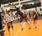 Volleyball Career