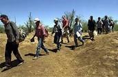 US/MEXICAN Border