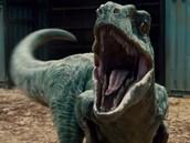 The Raoring velociraptor