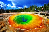 Yellowstone has many cool features!
