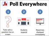 Poll Everywhere Pros