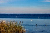 Lake Matta-muskeet