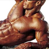 somanabolic muscle maximizer by Kyle Leon- The shoulders