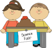 Science Fair Bonanza!