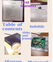 2nd Grade Text Features