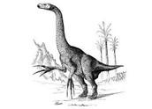 Dangers of the Cretaceous
