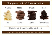 Different Types of Chocolate.