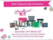 New Consultant Opportunity Incentive Going On NOW!!!