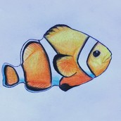 Finding Nemo Assosiation