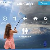 color tunisia
