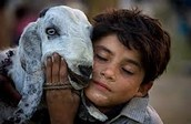 World Vision -      Building a Better World for Children