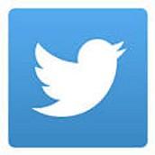 Tweet Tweet...Educators on Twitter
