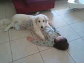 עם טינקוש הכלבה