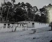 Filia obozu koncentracyjnego Stutthof