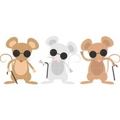 Story of the Three Blind Mice