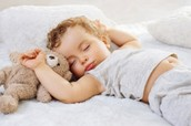 Sleep Stages an REM periods