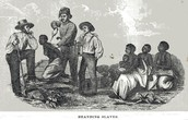 Branding Slaves, 19th Century