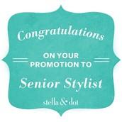Senior Stylist Promotions