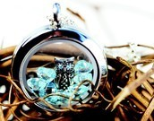 Origami Owl Living Lockets are customizeable and designed by YOU!