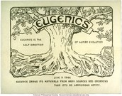 What is Eugenics?
