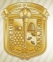 La Educación y Las Carreras en Guanajuato