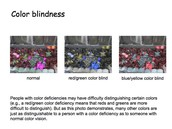 what it looks like to be colorblind