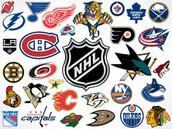 Top 5 NHL Goalies 2015