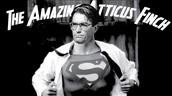 The Amazing Atticus Finch