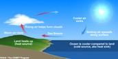 Sea Breeze picture