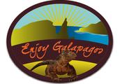 Enjoy Galapagos NOW