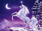 unicornio- unicorn